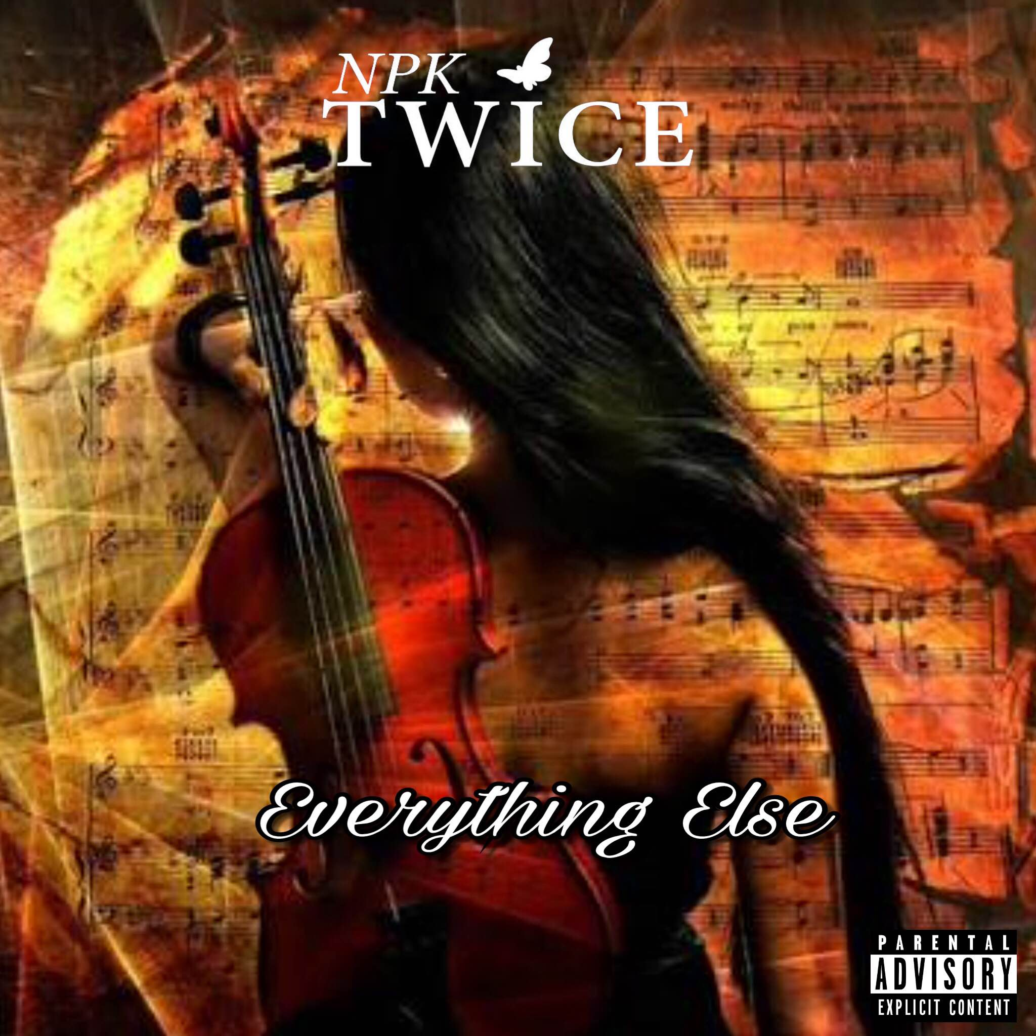NPK TWICE EVERYTHING ELSE COVER